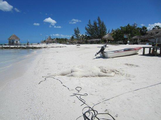 Beachfront Hotel La Palapa: Artistas en cada rincon de holbox...hasta en la arena
