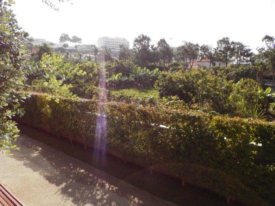 Golden Residence: vue depuis la chambre