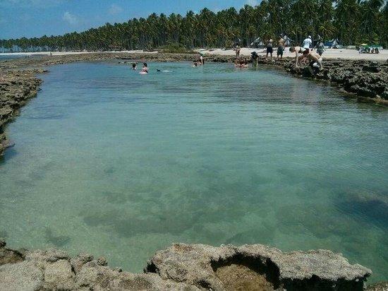 Carneiros Beach: piscina natural pela manhã