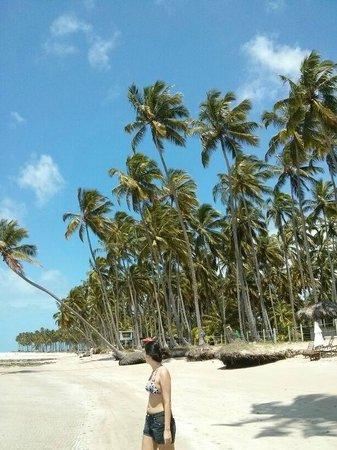 Carneiros Beach: paisagem da praia