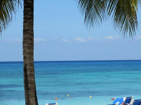 Allegro Cozumel : Loved the Beach