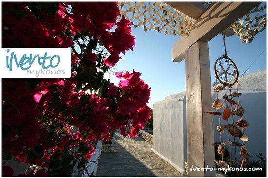 Il Vento Mykonos: ilvento