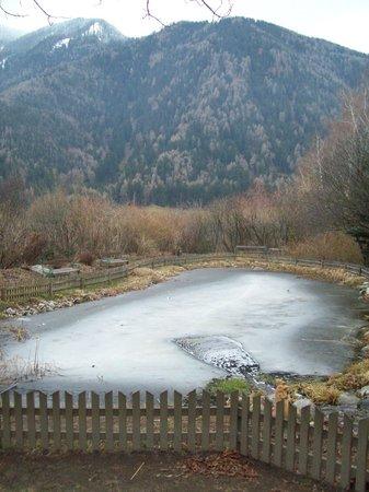 Romantik Hotel Stafler : Specchio d'acqua nel giardino