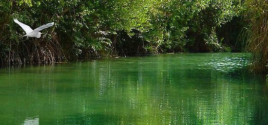 Fairmont Mayakoba: Nature Adventure-- Boat Tour