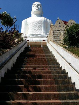Bahiravokanda Vihara Buddha Statue: The Stairs!