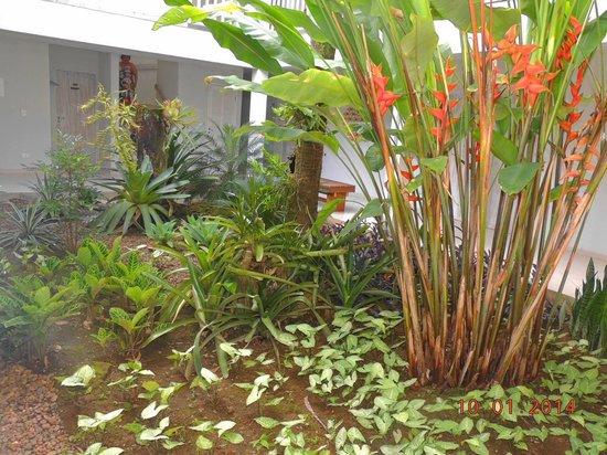 Pousada Baia das Conchas: jardim central