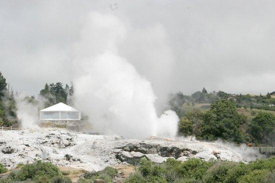 Pueblo maorí: The Prince of Wales' Feathers geyser
