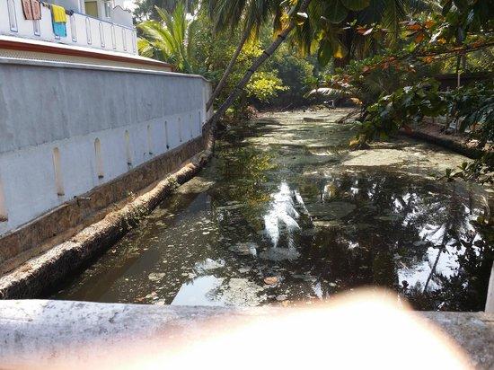 Di Sicuro Tourist Inn: Filthy canal/river next to Inn