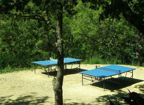 Camping Le Clos de Barbey : Jeux