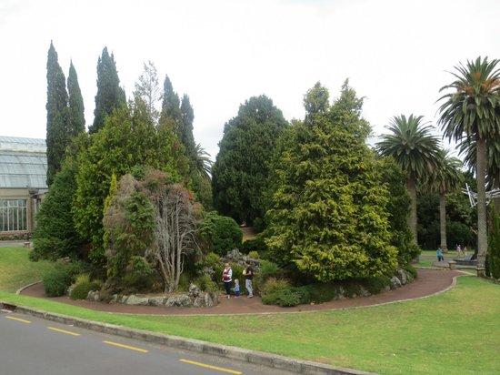 Musée du mémorial de guerre d'Auckland : Gardens