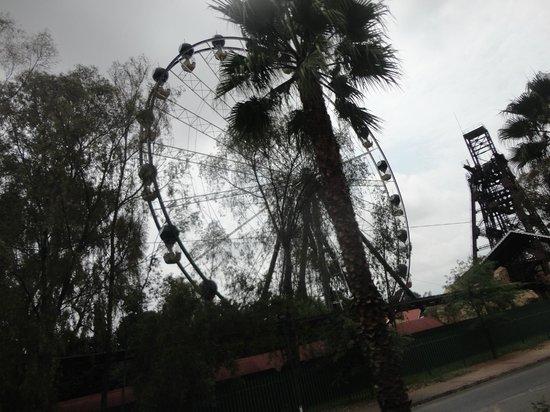 Gold Reef City: Roda gigante