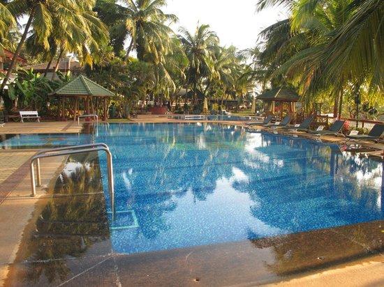 Prakruti Resort : swimmingpool