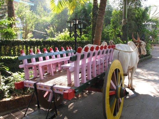 Prakruti Resort : Bullock car for going to the beach