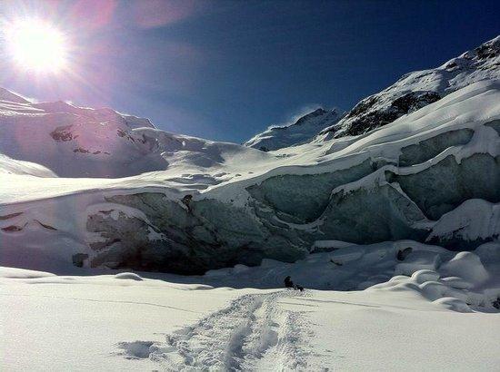 Morteratsch Glacier: ghiacciaio