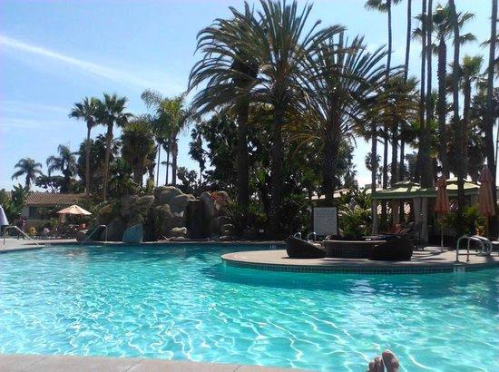 Hilton San Diego Resort & Spa: San Diego Hilton Pool (and my toes)