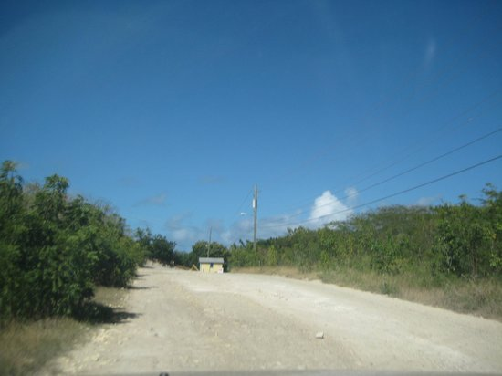 Nonsuch Bay Resort: Road leading to Nonsuch