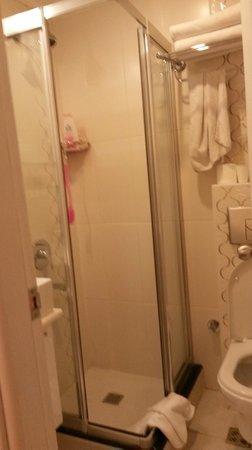 Albinas Hotel: Badrummet