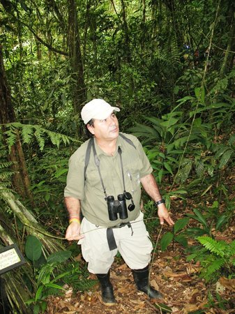 Rain Forest Aerial Trams : Our guide