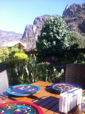 La Buena Vibra Retreat & Spa: El jardin de la terraza es relajante