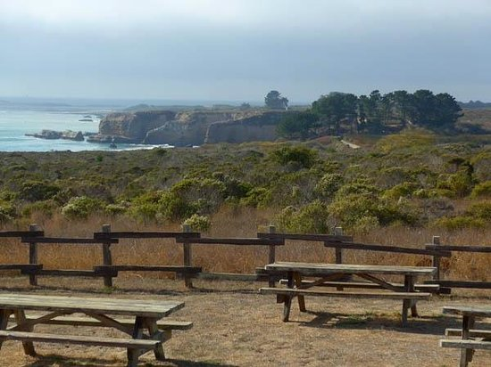 Ano Nuevo State Reserve: Start from here