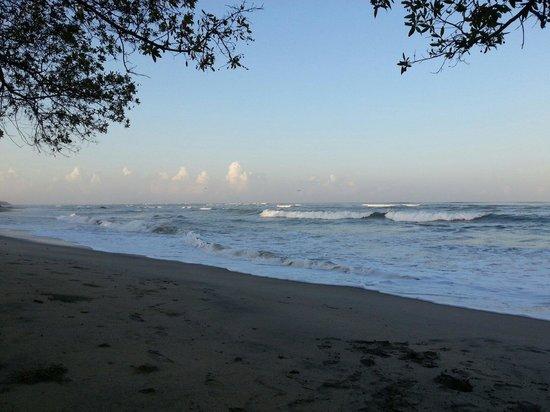 Cabinas La Playa : Playa cerca de las cabinas