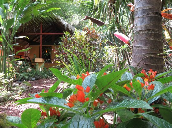 Caribe Town : Our Bungalow