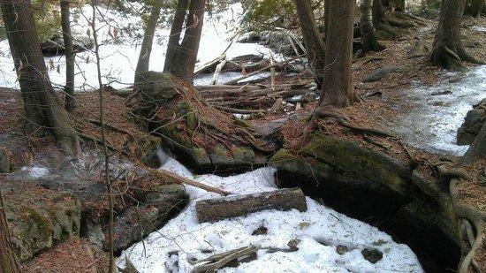 Rockwood Conservation Area: Rockwood Conservation