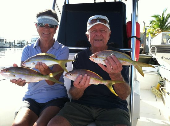 Atlantis House: Yellow Tail Snapper Catch
