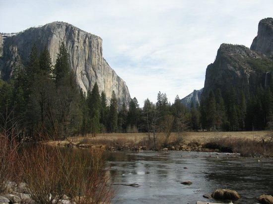The Majestic Yosemite Hotel: El Capitan