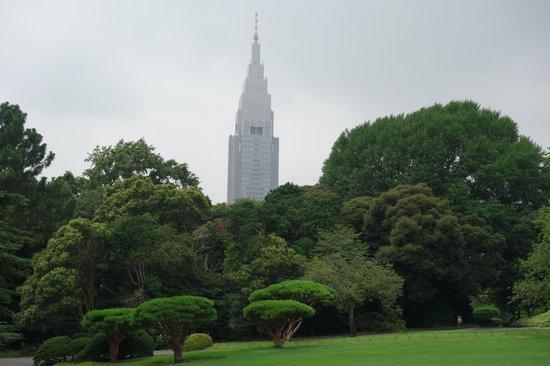 Shinjuku Gyoen National Garden : 公園とビル