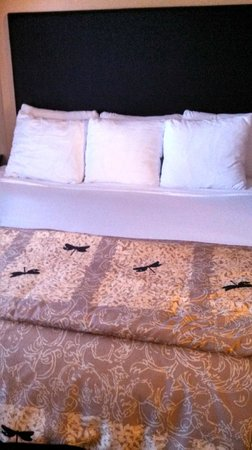 Cambria hotel & suites: Excellent bed and pillows