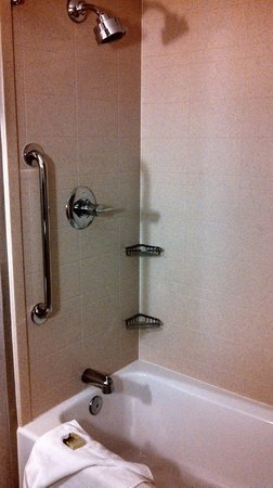 Cambria hotel & suites: Good tub/shower head