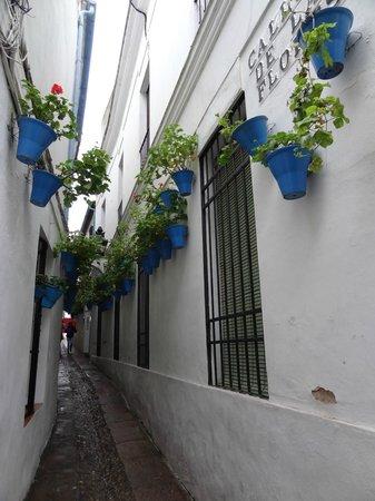 Jewish Quarter (Juderia): La Judería