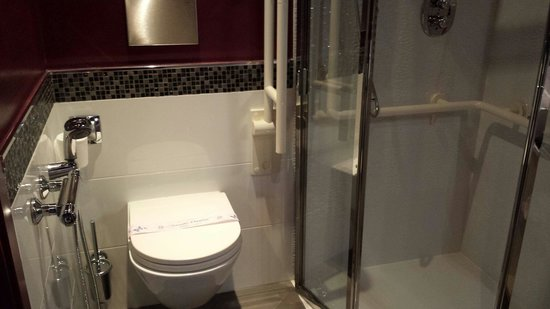 Hotel San Ranieri: Bathroom