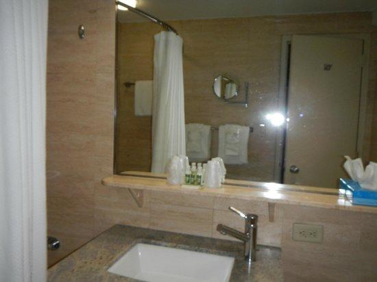 Miami International Airport Hotel : Bathroom