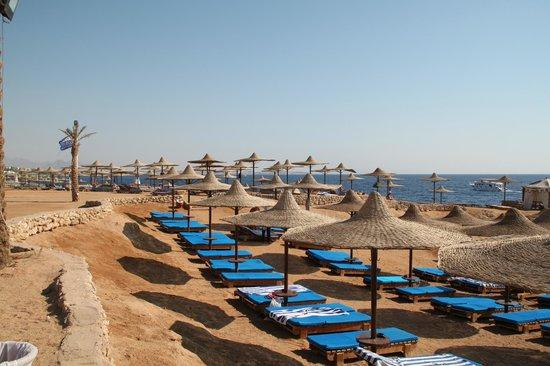 Otium Hotel Amphoras: Большой пляж
