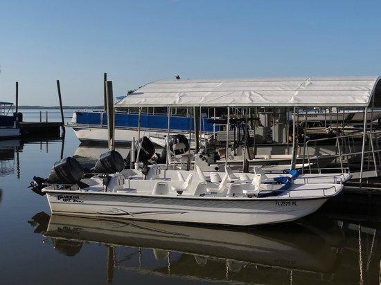 Everglades National Park Boat Tours: 6 passenger boat