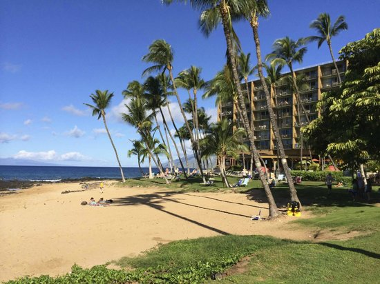 Sarento's on the Beach - Maui: View from the lawn in front of Sarento's on the Beach
