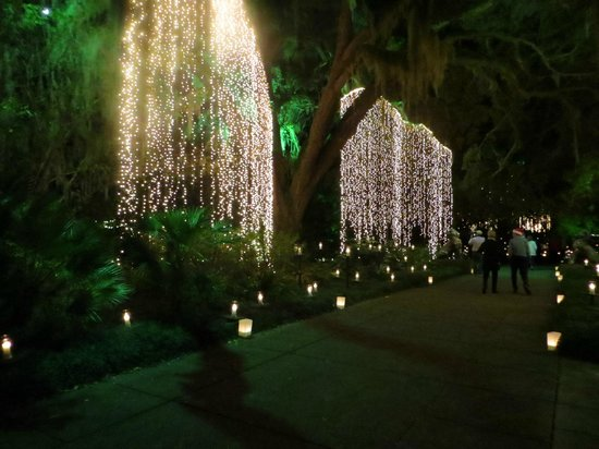 Brookgreen Gardens : Christmas 10,000 candles