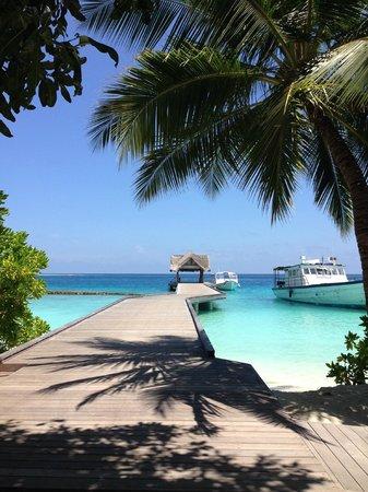 Kuramathi Island Resort: Her ankommet man med båd til hovedreceptionen