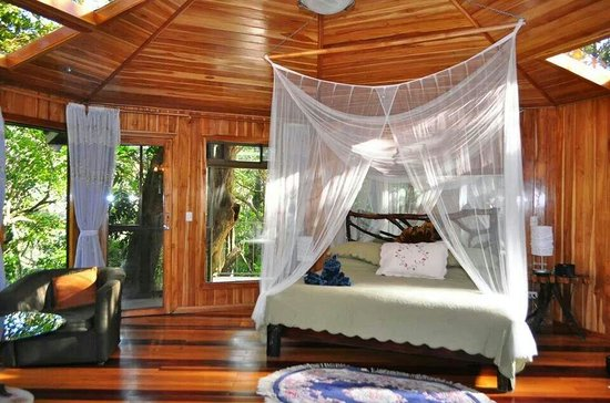 Hidden Canopy Treehouses Boutique Hotel: Glade room