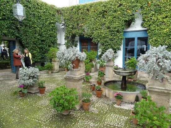 Palacio-Museo de Viana: Patios