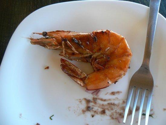 Bar Adelita: Nice large tasty shrimp