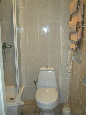 Semarah Hotel Lielupe : bathroom - clean