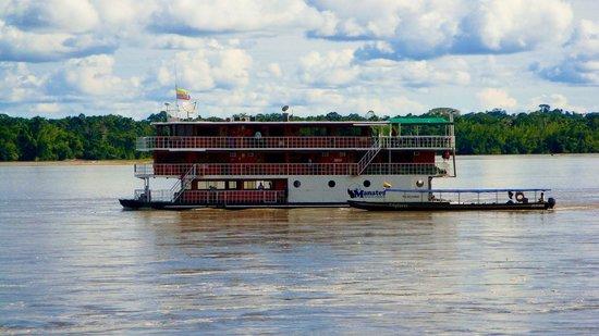 Manatee Amazon Explorer: The Manatee