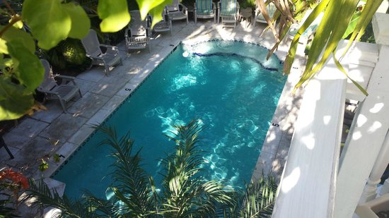 Coco Plum Inn Bed and Breakfast : looking down at the pool