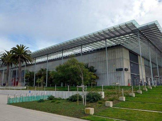 California Academy of Sciences: Building
