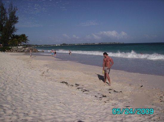 Bougainvillea Barbados: Bougainvillea Beach