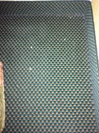 Days Inn Savannah -  Abercorn Southside: The floor was not clean or vacuumed prior to our check in