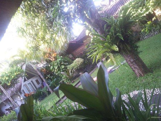 Rapture Surfcamp Bali: der Garten